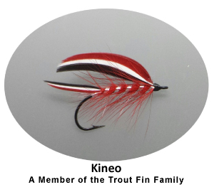 trout fin kineo