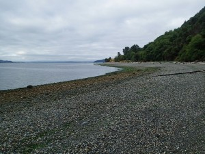 Maury Island Beach Park at low tide