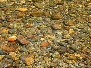 rocky-river-bottom-1587362