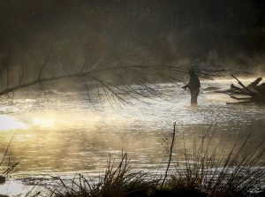 Fishing In The Early Morning Mist by Phil Rispin