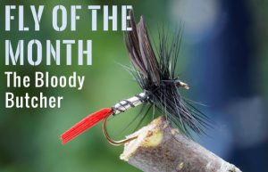 Bloody Butcher Dry Fly from the J. Stockard 2017 Catalog