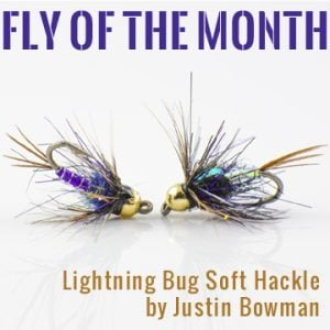 FOM april 2017 lightningbugsofthackle square