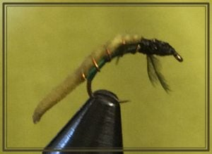 Green Caddis Worm