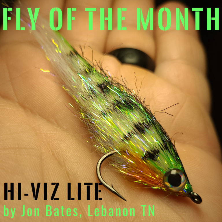 Fly of the Month August 2021