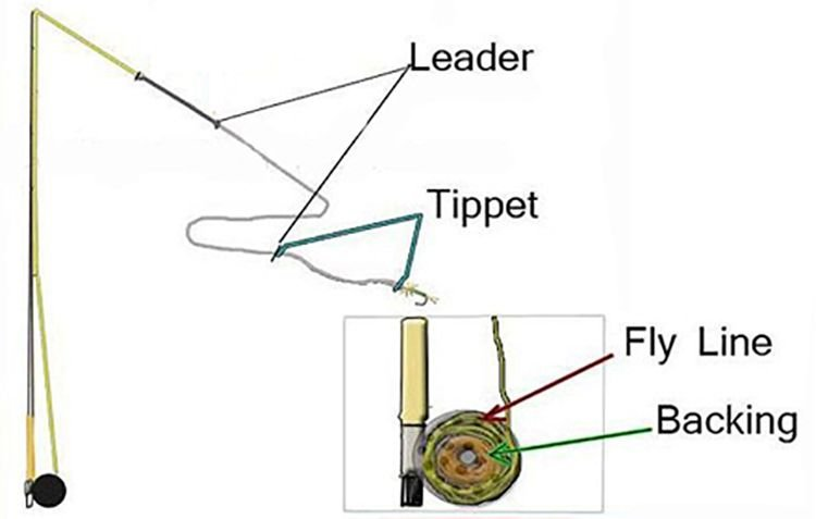 Fly fishing leader tippet backing j stockard for Fishing line leader