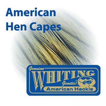 Whiting Farms American Hen Cape