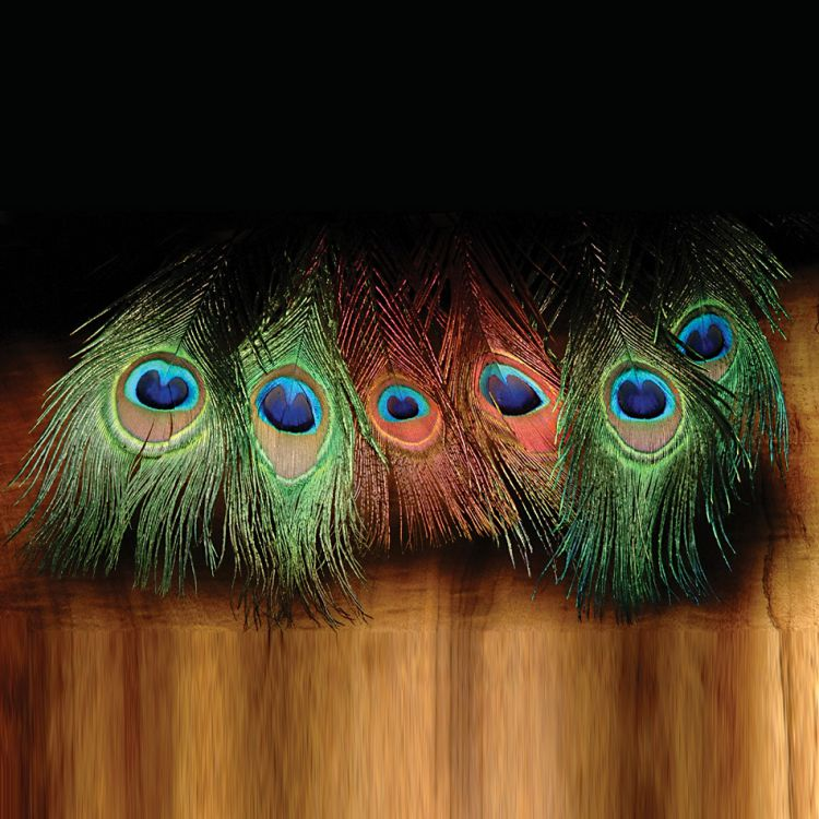 Hareline Peacock Eyed Sticks
