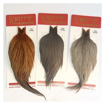 Whiting Farms Dry Fly Cape - Pro Grade