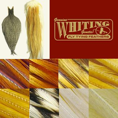Whiting Farms Dry Fly Cape - bronze