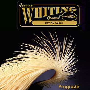 Whiting Farms Dry Fly Cape - prograde