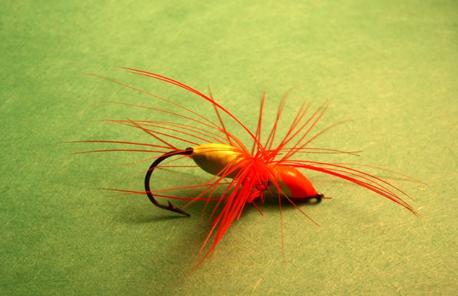 All Fly Line Ships Free ... Scientific Anglers, RIO & Cortland